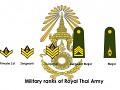 Siam Unit Veterancy
