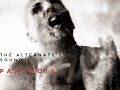 The Alternate's Sound - Paranoia Cover