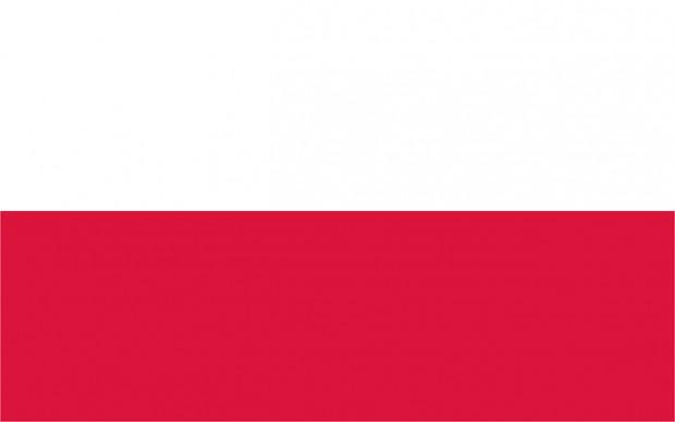 MMH5.5: Polish Translation (RC9)