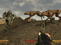 random enclave hunt