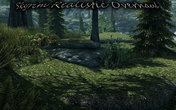 Skyrim Realistic Overhaul Part 2