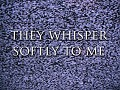 they whisper softly to me demo official