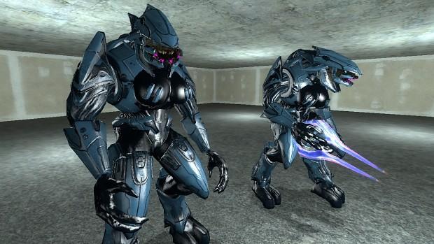Halo Girl Elite