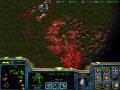 Starcraft SOR 4.1