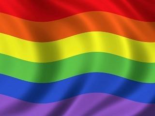 Mark of Gay Pride Ver. 1.1.1.8