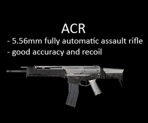 Adaptive Combat Rifle for multiplayer servers