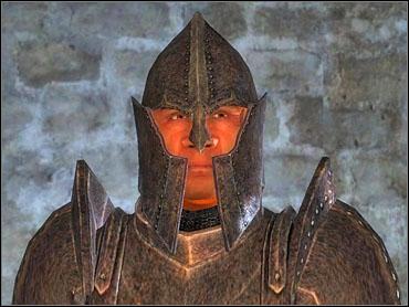 Oblivion Imperial Guard Voice Mod V1.1