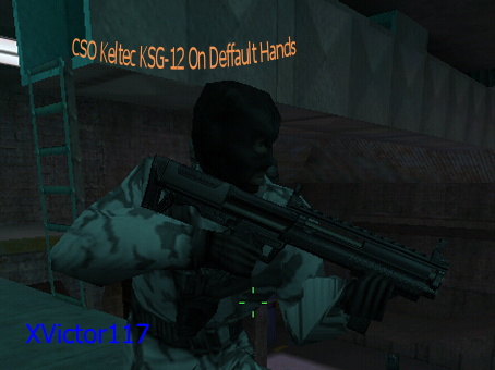 CSO KSG-12 on CS 1.6 Hands