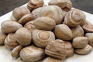 Wooden Rocks