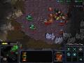 Starcraft SOR 4.3.1 (Hot fix)