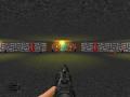Wolf 3D e1m1 for Brutal Doom