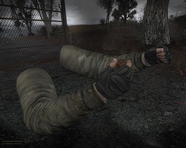 HD hands for S.T.A.L.K.E.R.: Last Day