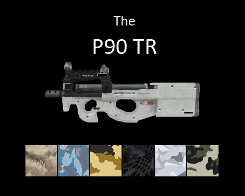 P90 TR PDW for multiplayer servers