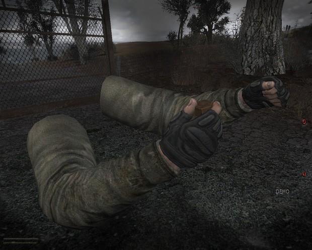 HD hands for S.T.A.L.K.E.R.: CoM