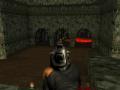 Tomtefar's Resources and Pistol v1.5