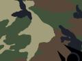 Combine Woodland camouflage