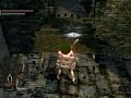 Wulf's Dark Souls Connectivity Mod (DSCM)