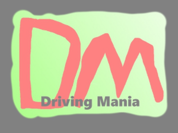 Driving Mania Snow Edition