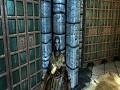 Dominion's More Dark Elves