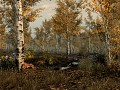 Falskaar Climates of Tamriel patch