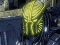 Lightning Spartan Predator