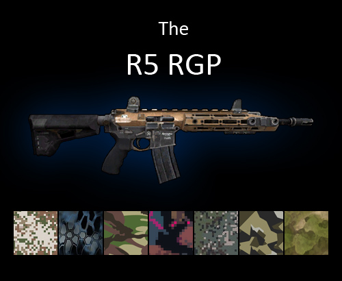 R5 assault rifle for multiplayer servers