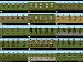 Simple - Composite Bow Skin Pack