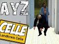 DayZ: Celle