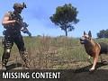 ASCZ Missing Content