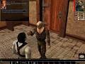 Downloads - Neverwinter Nights - Mod DB