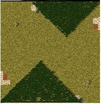Triangle Forests Large
