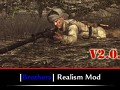 Brothers Realism Mod 2.0.9