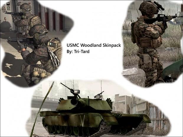COD4 USMC Woodland Skinpack