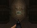 v19 Rifle Reskin for BD v21
