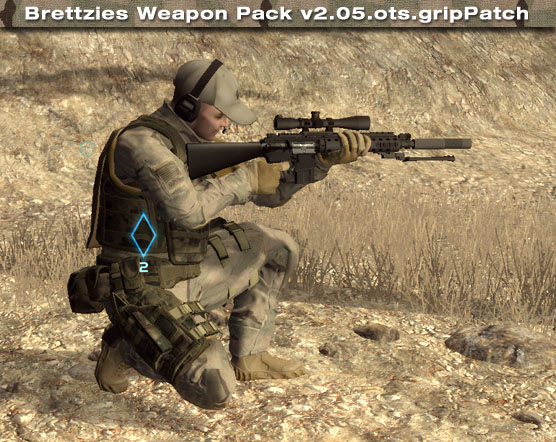 Brettzies Weapon Pack v2.05.gripPatch
