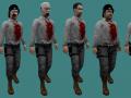 They Hunger NPCs - Part 2 - Asylum Security - Zombie