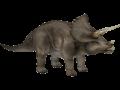 de triceratopo a triceratop
