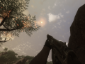 Hunter's Far Cry 2 Update - Steam - Final - FOV