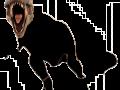 Dinossauros Esquecidos