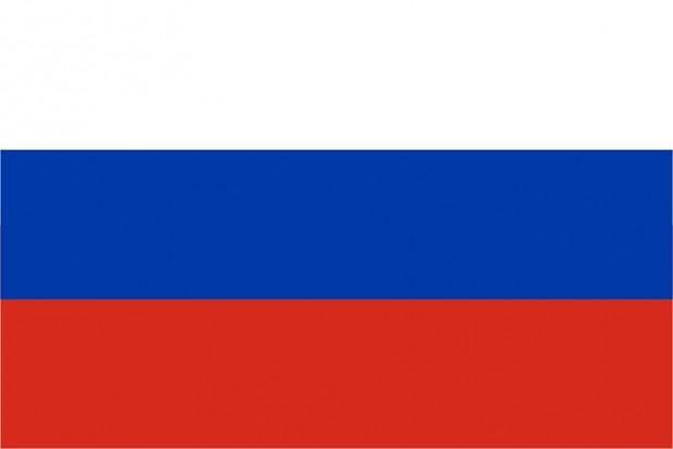 MMH5.5: Russian Translation (RC11)