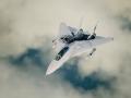 F-14 JPEG Doggo