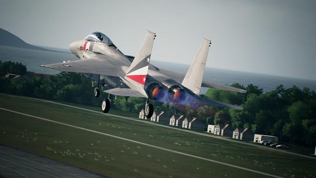 VFA-2 based F-15J/C