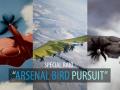 Arsenal Bird Pursuit