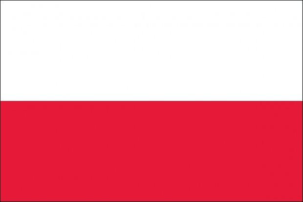 Polish Localization: UCP 1.1