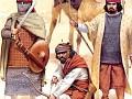 bedouin arab VII osprey