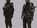 Brazilian armed forces mod