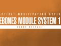 Scrubbed Module System