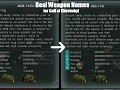Real Weapon Names for Call of Chernobyl