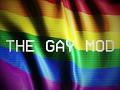 The Gay Mod 1.0