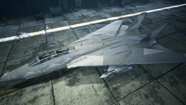 F-14B Ferris (AC5)